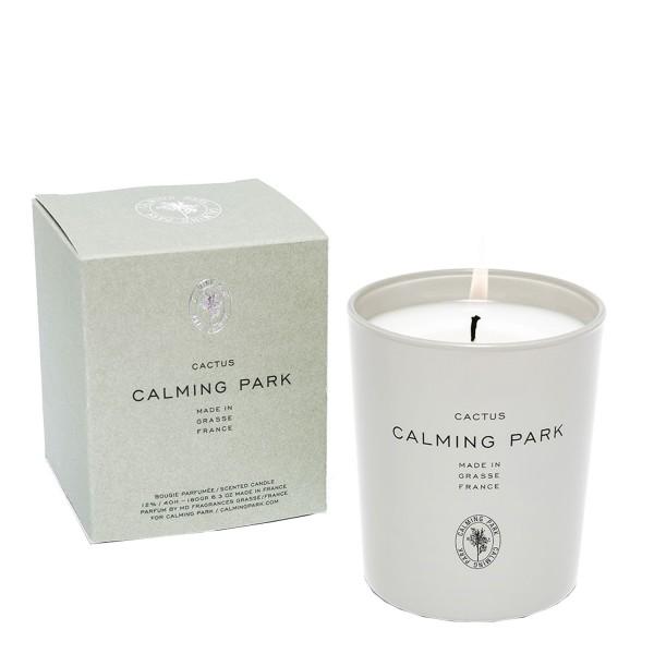 Calming Park - Duftkerze Cactus
